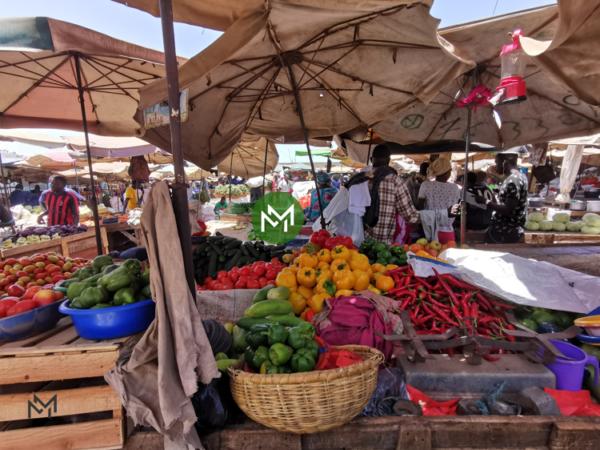 La cohabitation des grandes surfaces et des petits commerces de proximité et de détails : une nécessité pour démocratiser le commerce alimentaire