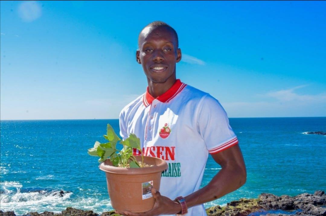 La culture de la fraise en Afrique, particulièrement au Sénégal : une réalité dans nos terroirs